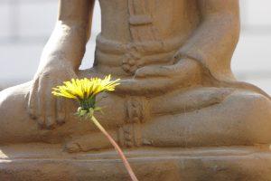 buddha-1590614_1920